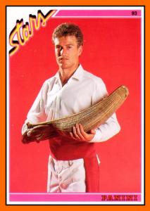 01-Didier DESCHAMPS Panini Card footstar 1993